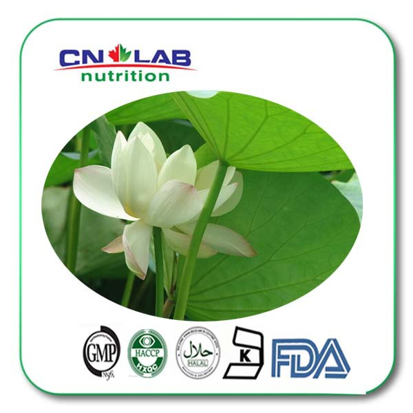 Top Quality From 10 Years experience manufacture lotus leaf extract with reasonable price стоимость