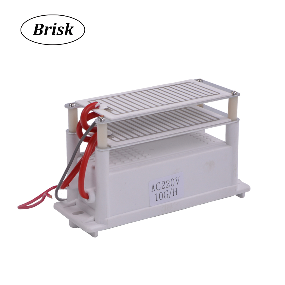 110-220V Ozone Generator Part 10g With Ceramic Plate Long Life Style Longevity Double Sheet For Chemical Factory