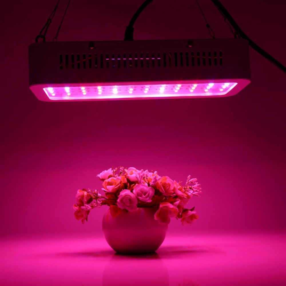 HNGCHOIGE 60 LED 600W Double Chip Grow Light Full Spectrum For Garden Hydroponic Indoor Plants  EU/US Plug 85-265V 200w full spectrum led grow lights led lighting for hydroponic indoor medicinal plants growth and flowering grow tent