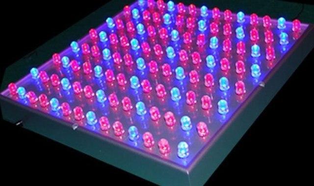 45W LED Grow light;112pcs(72pcs red:40pcs blue)10mm leds;AC85~264V input;
