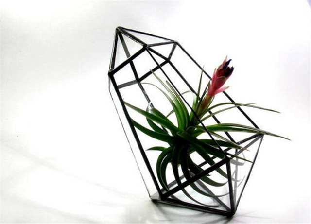 Ручной стекло террариума / современный плантатор для внутреннего озеленения / геометрическая орхидеи плантатор алмаз стол цветочный горшок зеленый плантатор