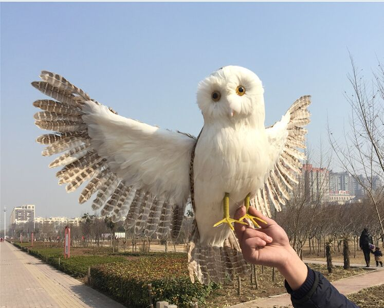big new creative simulation owl model foam& furs wings owl toy gift about 70x40cm 1152 large 24x24 cm simulation white cat with yellow head cat model lifelike big head squatting cat model decoration t187