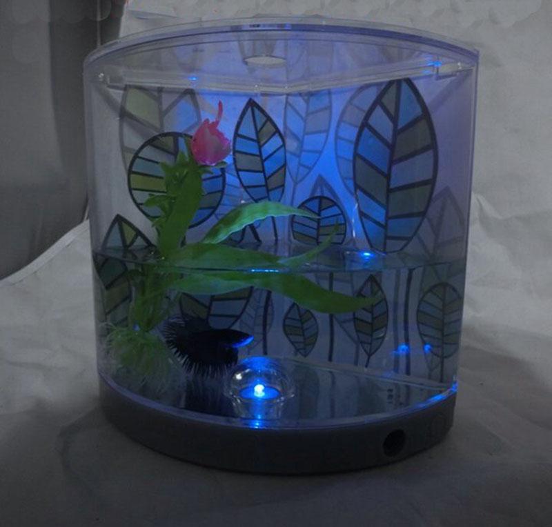 acquario betta-acquista a poco prezzo acquario betta lotti da ... - Acquario Casa Funzionamento E Prezzi