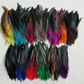 13 kind of high quality DIY dye pheasant  feather 500  root wholesale sell 12.5-20cm/ 5-8''