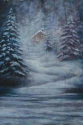 10x20ft hand painted winter cabin scenic Muslin backdrops photography wedding,100% cotton photo studio snow backgrounds