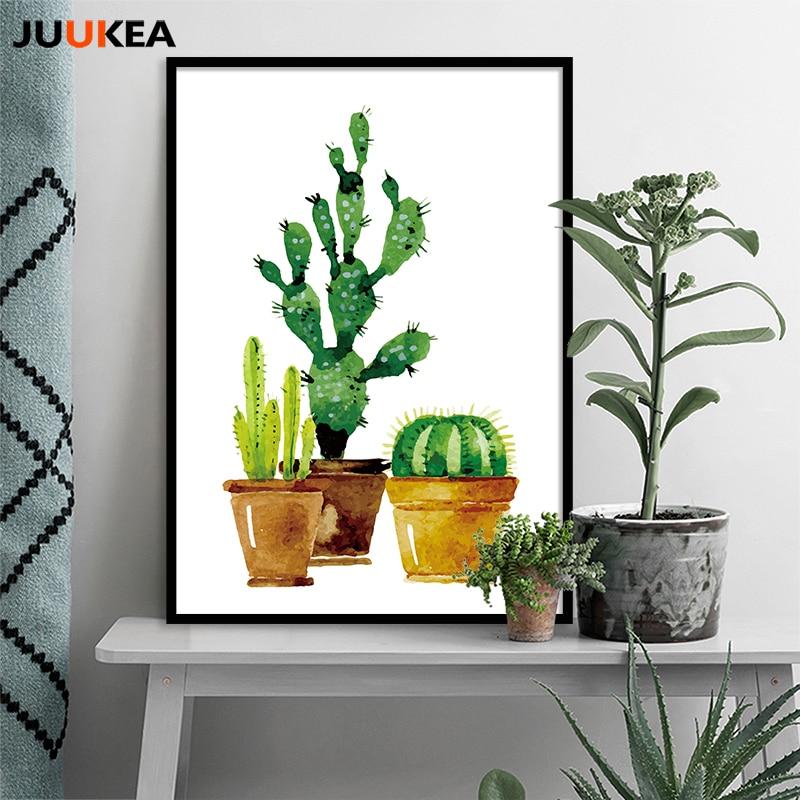 Comprar primavera flores de cactus for Proveedores decoracion hogar