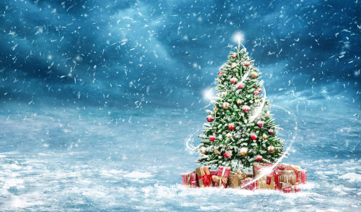 Christmas Background Gif Christmas Tree Gif In Indulging Photo Shoot Background From