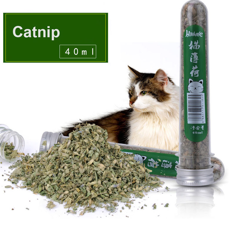 Natural Catnip for Cat Dried Silvervine Matatabi Polygonum Leaves 40ml Cat Snacks Grass 20g Menthol Flavor Funny Cat Toys