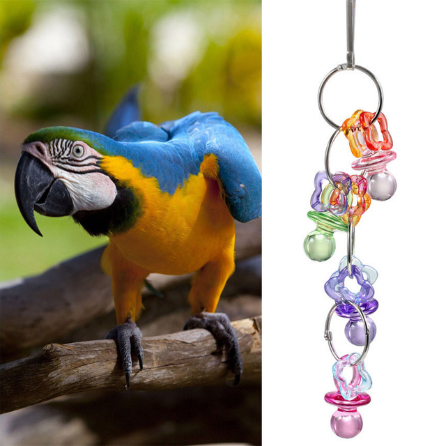 Acrylic Pet Bird Bites Toy Colorful Peck Parrot Cage Play Toys Cockatiel Budgie