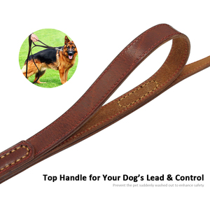 Image 3 - Geniune 革ペット犬リーシュロープペット K9 トレーニングウォーキングリードリーシュコード中大犬クイック制御 2 ハンドル