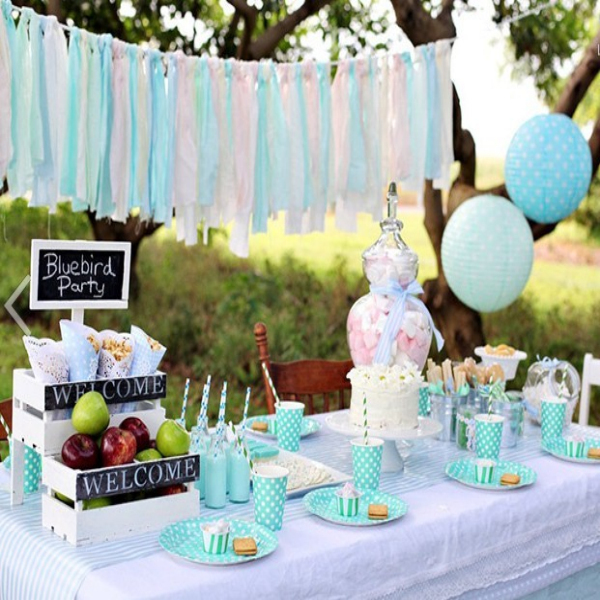 Tiffany Blue Birthday Party Theme Unique Birthday Party Ideas And