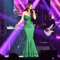 Nancy Ajram Arabic Mermaid Celebrity Dress Evening Gown One  Shoulder Green Long Formal Dress Kaftans Islam Robe De Soiree NA011