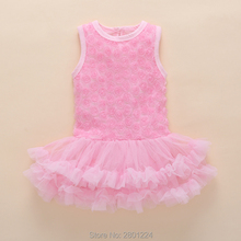 Baby Girl Infant Dress & Shoes Set
