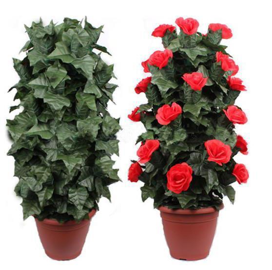 Buisson de Rose en fleurs-télécommande-fleurs 10/20/30, tours de mentalisme, illusions de magie de scène, trucs de magie de rue, facile