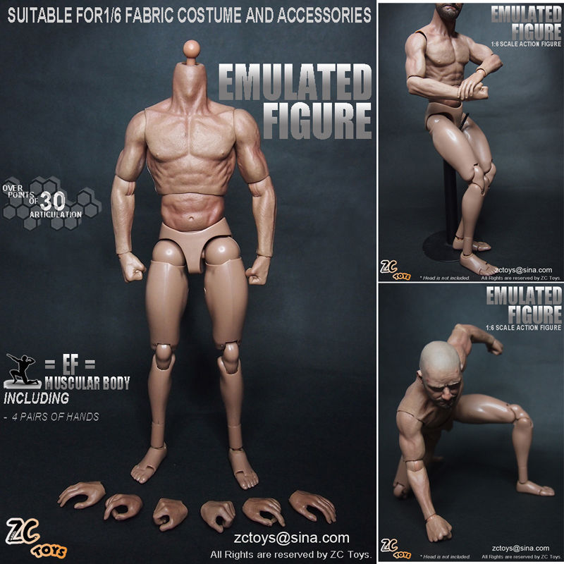 Zc Toys 16 Scale Muscular Figure Body Similar To Ttm19 -1115
