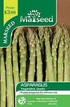 Marseed Grow Heirloom 100 Asparagus Vegetable Seeds Interesting Semi-Urban Garden
