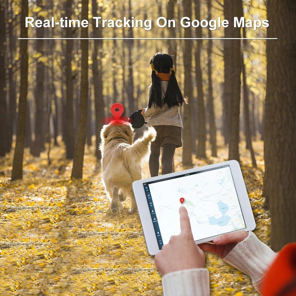 Rastreador GPS para perro TK909, impermeable, IP65, Geofence, Google Track, GPS para Collar de gato, Monitor de voz, Mini localizador GPS para perro, aplicación gratuita