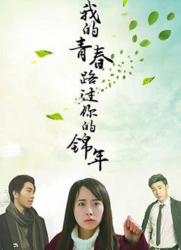《我的青春路过你的锦年》2017年中国大陆剧情,爱情电影在线观看