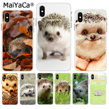 MaiYaCa Cute Animal Little Hedgehog On Sale Luxury Cool Phone Accessories Case for iPhone 8 7 6 6S Plus X XS max 5 5S SE XR(China)