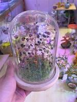 new arrivals natural tourmaline quartz crystal lucky tree reiki healing gemstone crystal tree meditation for home decoration