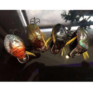 Image 3 - 2016 High Quality Freshwater Japan Insects Fishing Lure Carp Bait Wobbler 3D eyes luz Pesca Crankbait Leurre Peche 45mm 6g