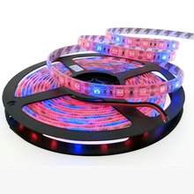 (5m/lot) DC12V LED Grow Lights Growing LED Strip 5050 IP20 IP65 Plant Growth Light for Greenhouse Hydroponic plant