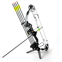 Junxing M120 Dream Hunting Compound Bow Right Hand Outdoor Shooting Bow Archery Arrow Set 2 Color