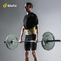 Glofit Soft Removable Back Waist Support Belt Brace Protection Belt For Fitness Weight Lifting Running Sport