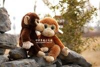 Knuffeldier 22 cm grote ogen aap knuffel zachte pop w1890