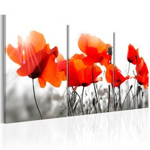 Wholesale 3 Pieces/set Modern floral poster Wall Art For Wall Decor Home Decoration Picture Painting PJMT-B (612)(China)