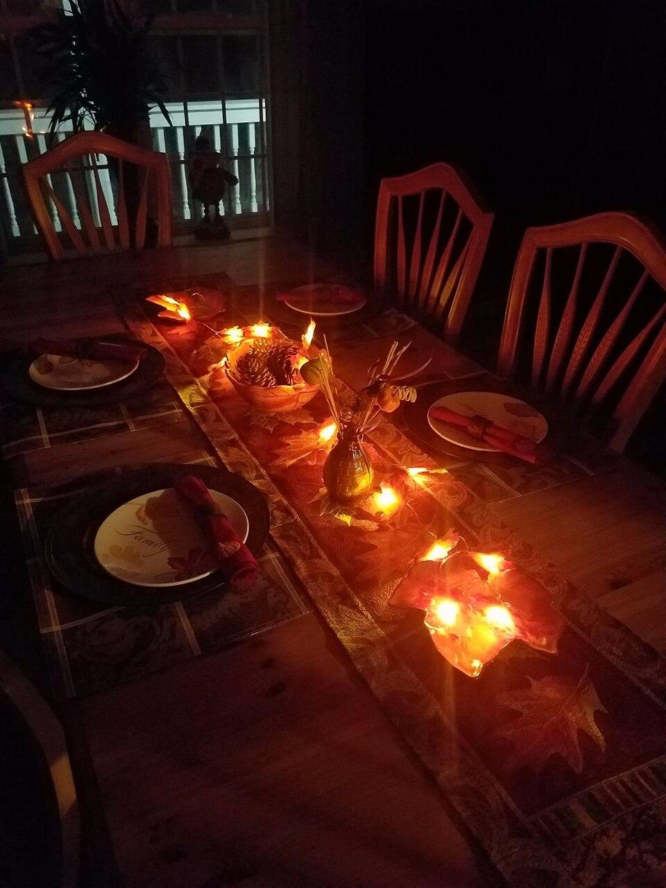 holiday light (11)