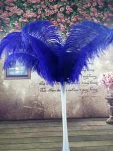 Image 4 - Mooie 100 stks Kwaliteit grote Pole natuurlijke witte struisvogelveren 50 55 cm/20 22 inch bruiloft carnaval stage performance apparel