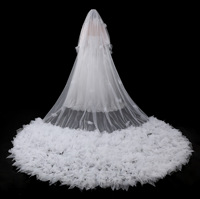Bling Bling Sequins Beads Cathedral Bridal Veils Appliques Lace Edge Crystals 1T With Comb Attached Custom Made Long 5 M Wedding