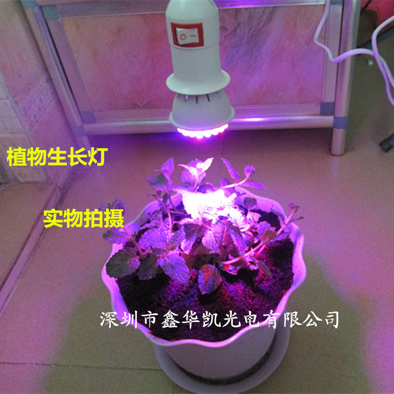LED Grow Lights Fill Light Succulents Flower Effect Light Red Light Indoor  Plants In Growing Lamps From Lights U0026 Lighting On Aliexpress.com | Alibaba  Group