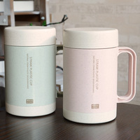 Nature Straw Fiber Plastic Outer Face Ceramic Mug With Handle Eco Friendly Double Layer Drink Cups