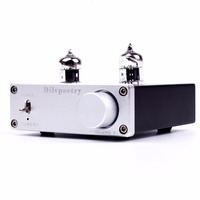 Dilvpoetry TUBE 01 preamp tube amplifiers 6J1 HIFI DAC Audio Pre amplifier DC12V/1A Red LED Tube Lamps