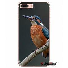 8304c14696d Mooie kingfisher bird Voor Samsung Galaxy S2 S3 S4 S5 MINI S6 S7 rand S8 S9  Plus Note 2 3 4 5 8 Coque Fundas Siliconen Shell Cas.