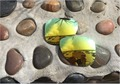 24 К Желтый Замена Спортивный Поляризованные Линзы для Oakley Отправки 2 Солнцезащитные Очки 100% UVA и UVB