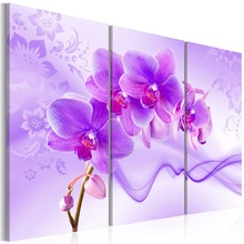 Top Wall Deocr Canvas Painting 3 Pcs Phalaenopsis post Modern Printed Oil Pictures Beauty In Home Living Room No Frame or framed