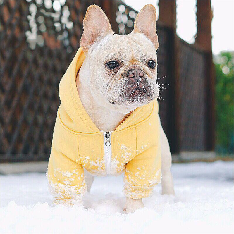 Dog Clothes Winter Soft Hoodie Chihuahua Warm Pet Clothing for Small  Jacket