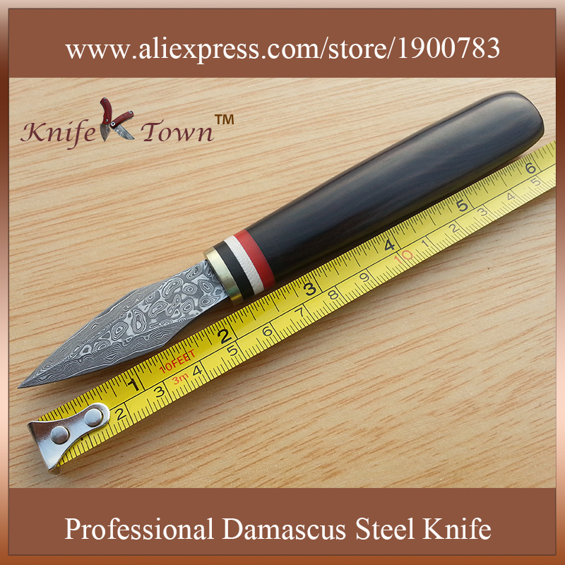 DT103 fashional fixed damascus steel Blade wooden handle Camping font b knife b font Outdoor multi