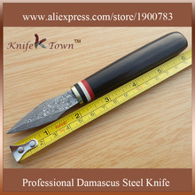 DT103 fashional fixed damascus steel Blade wooden handle Camping knife Outdoor multi Knife Utility Tools