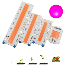Full Spectrum LED Phyto Lamp 20W 30W 50W 70W 110V 220V High Power COB Chip Diode Grow Light Phytolamp For Plants Hydroponics