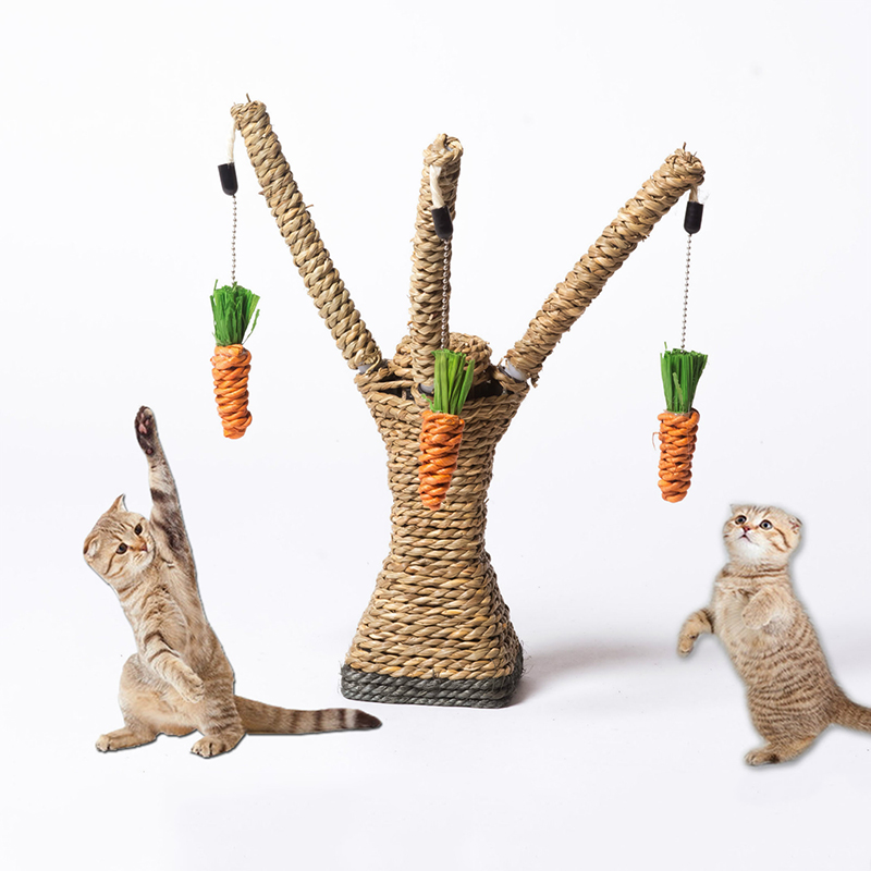 Katze Spielzeug Interaktive Baum Turm Regale Klettern Rahmen Katze Kratzen Post Sisal Seil Mit Katze Zahn Reinigung Kauen Rettich