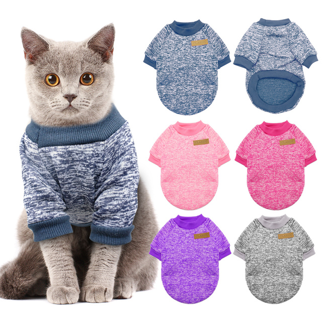 Cat and small dogs sweater