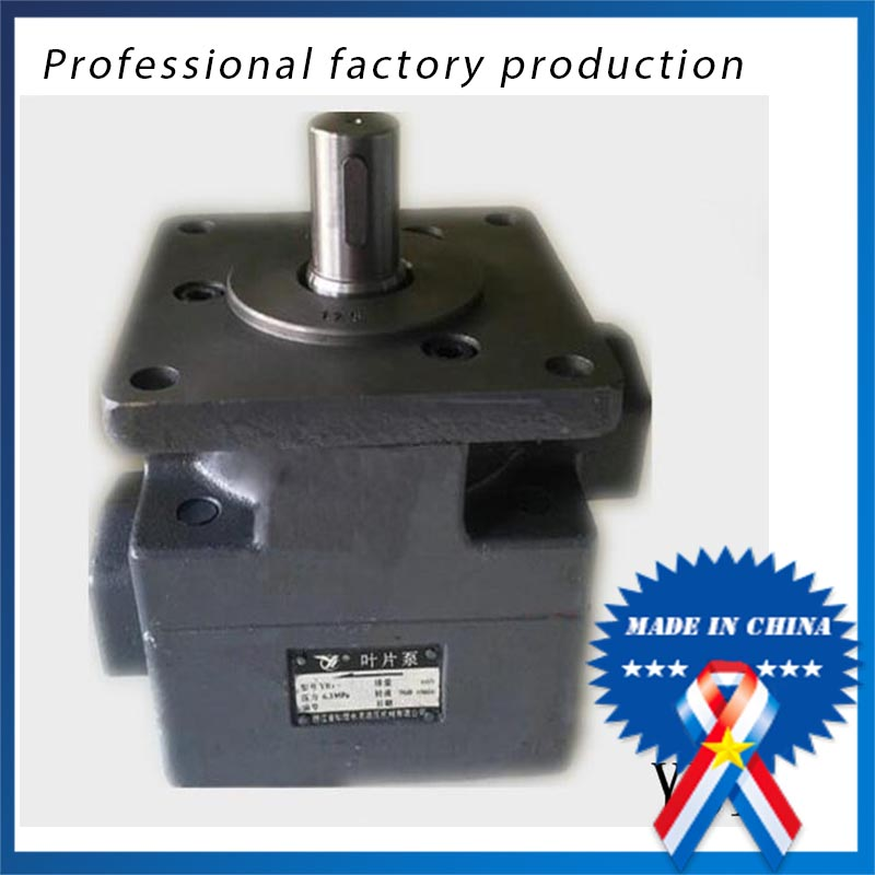 sids Quantitative vane pump YB1-12.5 / 16/20 machine tool pump lev  dynkin quantitative credit