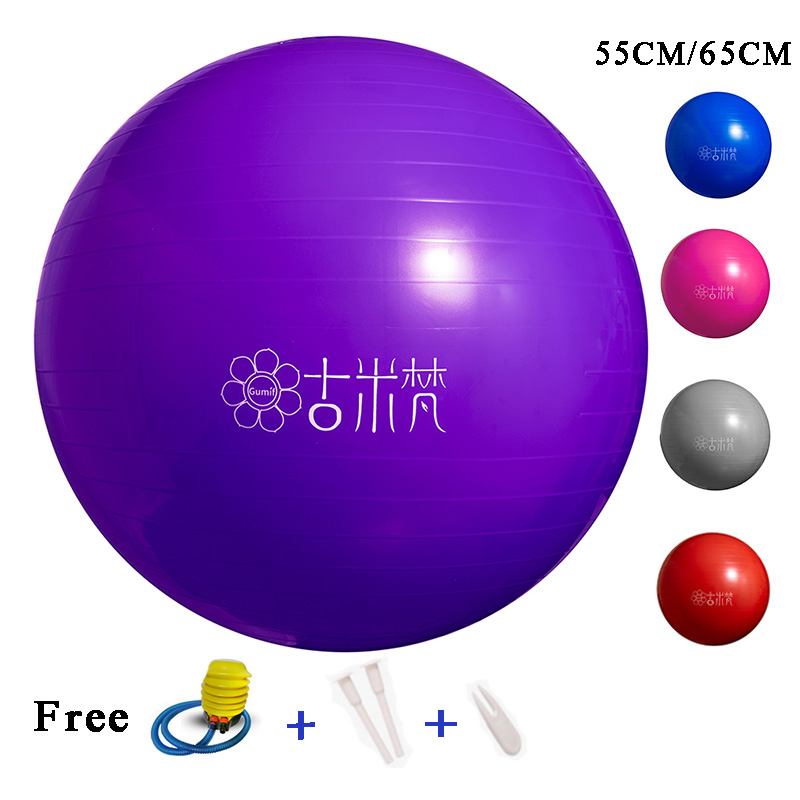 GUMIF Yoga Balls Sports Pilates Fitness Ball Exercise Gym Balance Ball Workout Massage Ball 55CM65CM Inflator Pump Free