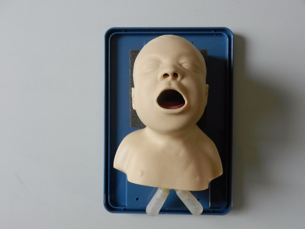 neonate child and adult  intubation modelneonate child and adult  intubation model