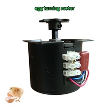 Best egg turn motor of incubator use to eggs for spare parts