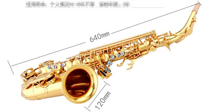 Chinese Brand Original Taishan TSAS 767 E flat Alto Saxophone Gold Lacquer  Abalone Port Button for Adult and Child-in Saxophone from Sports &